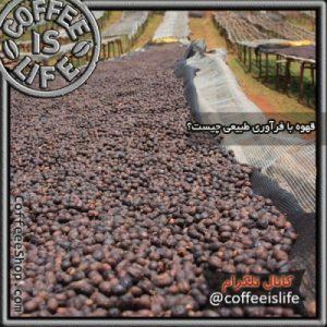 قهوه | قهوه با فرآوری طبیعی چیست ؟