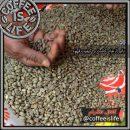 تاثیر ارتفاع کاشت بر کیفیت قهوه