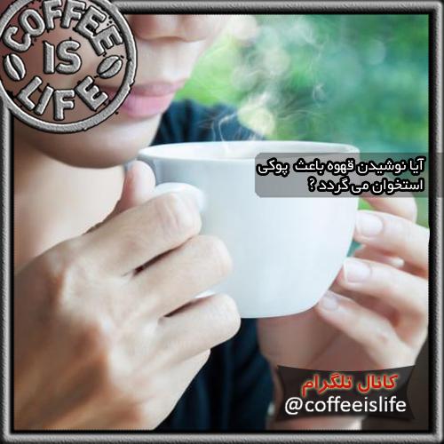 قهوه | آیا قهوه باعث پوکی استخوان می گردد !!؟