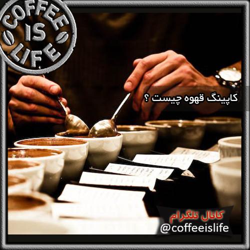 قهوه | کاپینگ قهوه (Coffee Cupping) چیست ؟