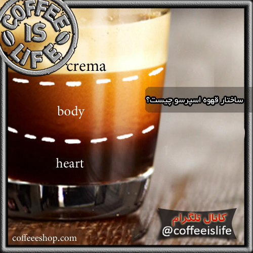 قهوه | ساختار قهوه اسپرسو چیست؟