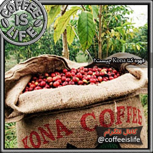 قهوه   قهوه کنا (Kona Coffee) چیست؟