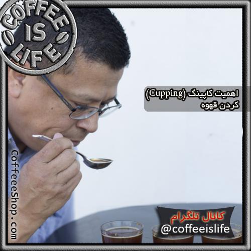 قهوه | اهمیت کاپینگ (Cupping) کردن قهوه چیست؟