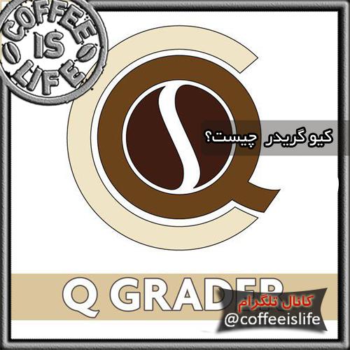 قهوه | کیو گریدر (Q Grader) چیست؟