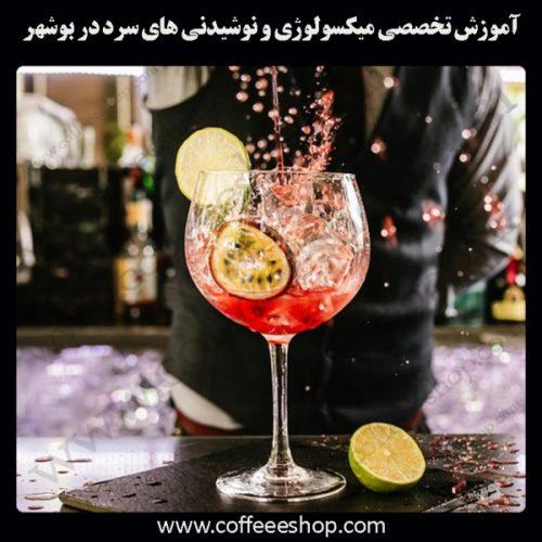 شهر بوشهر – آموزش تخصصی میکسولوژی و نوشیدنی های سرد درشهر بوشهر با مجوز فنی حرفه ای و پنج مدرک بین المللی