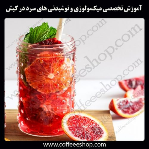 جزیره کیش –آموزش تخصصی میکسولوژی و نوشیدنی های سرد در شهر بوشهر با مجوز فنی حرفه ای و پنج مدرک بین المللی