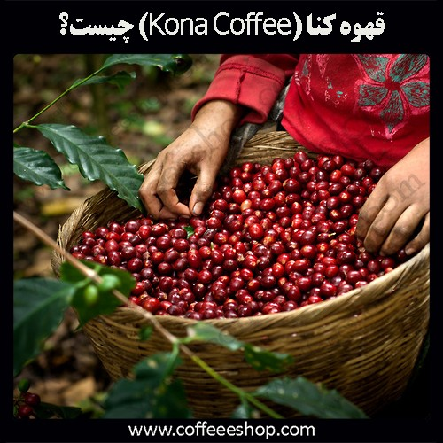 قهوه کنا (Kona Coffee) چیست؟