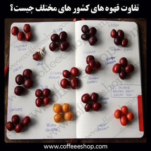 تفاوت قهوه های کشور های مختلف چیست؟
