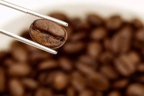 موج اول قهوه (First Wave Of Coffee) : رشد مصرف قهوه