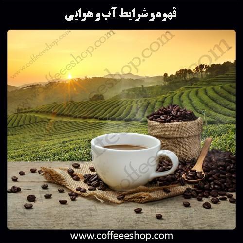قهوه و شرایط آب و هوایی