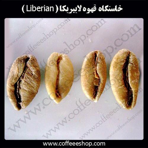 خاستگاه قهوه لایبریکا (Liberian coffea)