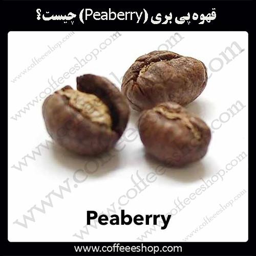 قهوه پی بری (Peaberry) چیست؟