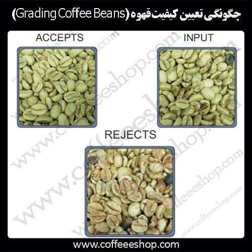 چگونگی تعیین کیفیت قهوه (Grading Coffee Beans):