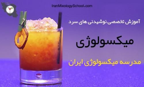 سایت مدرسه میکسولوژی ایران