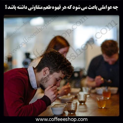 چه عواملی باعث می شود که هر قهوه طعم متفاوتی داشته باشد ؟