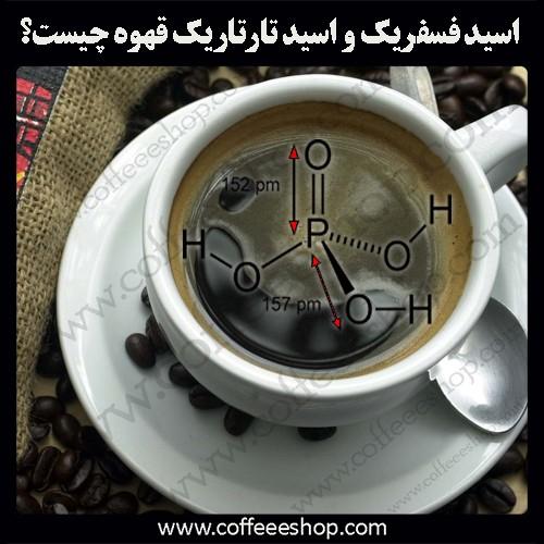 اسیدهای موجود در قهوه | اسید فسفریک قهوه و اسید تارتاریک قهوه