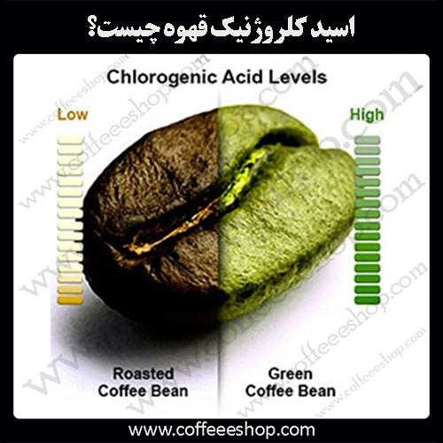اسیدهای موجود در قهوه | اسید کلروژنیک قهوه