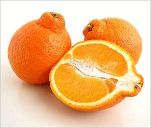 نارنگی تانجلو و مینیولا 