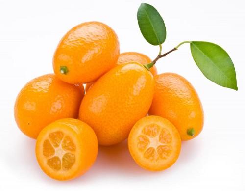 کام کوات - Kumquat