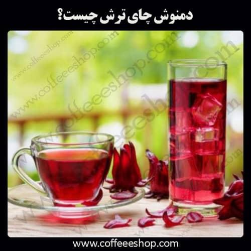 دمنوش چای ترش چیست؟ Hibiscus Sabdariffa